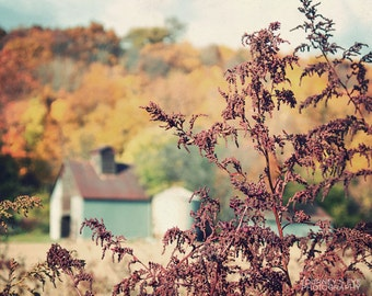 Autumn at the Farm - fall photography, country decor, nature, fall colors, Midwest, barn, wall art
