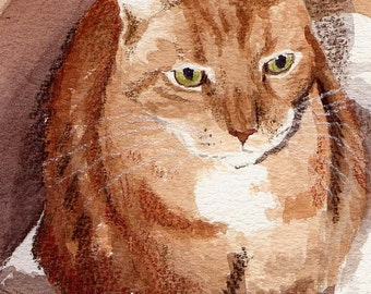 D in a Box, a Watercolor Painting....... Custom Pet Portraits