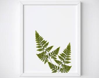 Fern Print, Tropical Leaf Print, Fern Wall Art, Botanical Print, Tropical Wall Art, Greenery Print, Fern Leaf Art Print, Botanical Wall Art