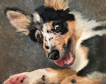 Pet Portraits, Pet Paintings, 6x6 custom oil pet portraits, dog portraits, cat portraits, horse portraits