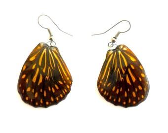 Real Butterfly Wings Earrings Handmade Jewelry Gift / Black Orange / Natural Jewelry Earring