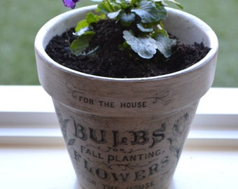 Flower Bulb Terracotta Pot, Terracotta pot, Terracotta pots, Flower pots, Painted flower pot