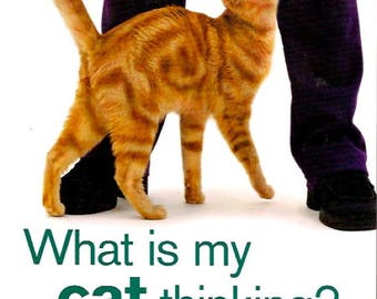 WHAT Is My CAT THINKING By Gwen Bailey