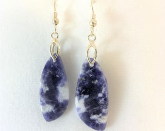 Beautiful Scapolite Drop Earrings - Sterling Silver French Hook Ear Wires - Free Form - All Natural      E013