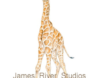 Giraffe Watercolor Print Giraffe Baby Watercolor Giraffe Art Baby Giraffe Nursery Art Boys Room Wall Art Girl Room Large Poster Large Print