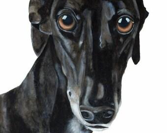 Greyhound Galgo, Sighthound, Black Greyhound, Lurcher, Sighthound, Dog, black dog, Art print  8x12 inch