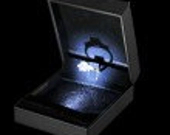 LED Ring-Earring-Pendant  Boxes make everything sparkle. Bling your rings etc!