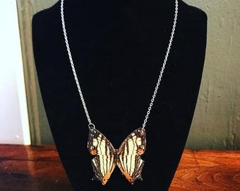 Butterfly jewelry, butterfly necklace,butterfly wing necklace,entomology necklace, butterflies, necklace butterfly