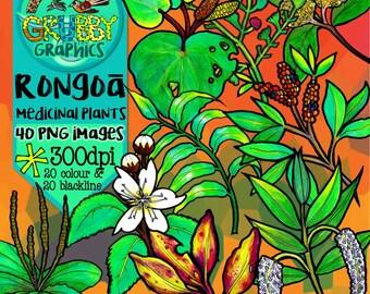 Rongoa Maori, New Zealand Native Medicinal Plant Clip Art, Instant Digital Download