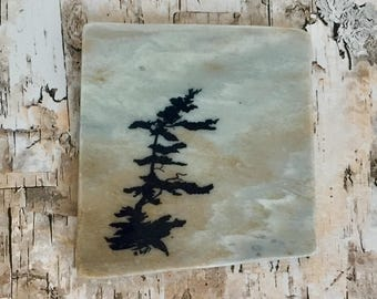 Natural Stone Coaster - Windswept Tree