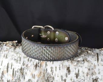 2. Hand Tooled 'Lizard' Design Collar