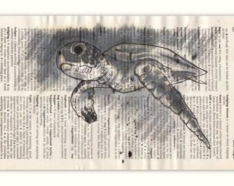 Loggerhead Turtle Greetings Card