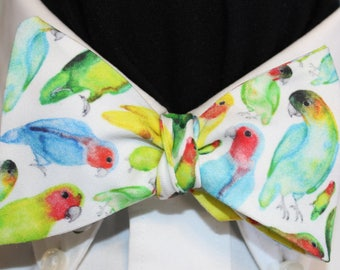 PRETTY POLLY--Handmade bow tie in novelty cotton, colorful parrots on white field, for well dressed persons
