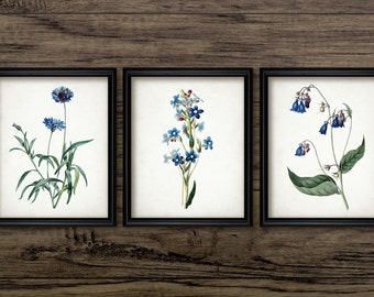 Blue Flower Print Set of 3 - Blue Botanical Print - Blue Art Decor - Floral Decor - Set Of Three Prints #1962 - INSTANT DOWNLOAD