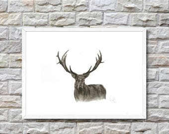 Yes deer - Giclée Print of Charcoal drawing