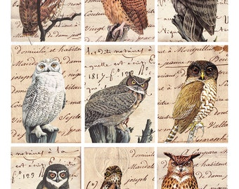 wise old owls on antique handwriting, digital collage sheet no. 379