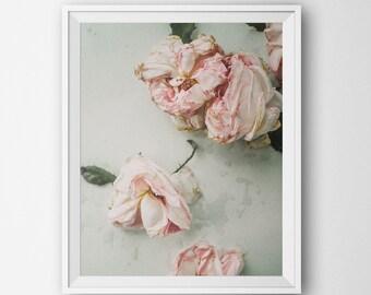 Boho Art, Digital Poster, Roses Flowers, Minimalist Modern, Home Decor Digital Printable, Floral Botanical Landscape Photography Minimal