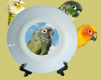 "Scaly-headed Pionus Parrot Blue Sky Clouds White Decorative Ceramic 8"" Plate and Display Stand"