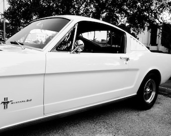 1966 Ford Fastback Mustang Car Photography, Automotive, Auto Dealer, Muscle, Sports Car, Mechanic, Boys Room, Garage, Dealership Art