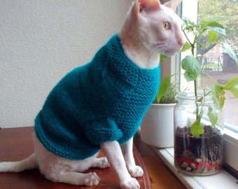 Blue cat sweater Sphynx clothes hand made blue sweater for cat with heart pattern