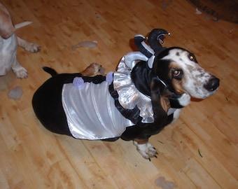 Dog Halloween Costume-Jester