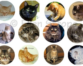 STICKERS, Envelope Seals, Cats, Art, Ellen Strope, Repositionable adhesive, gifts, Fun stickers