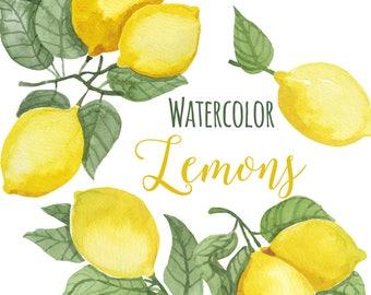 Watercolor Lemon Clip Art, Trendy Lemon leaves Clipart, Lemons Illustration