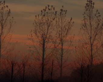 "Paris art photo ""Sunset"""
