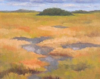 Oil Painting, Everglades Grass, 8x8 Oil on Canvas Daily Painting, Florida Everglades