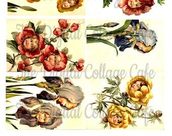 Flower Babies Collage - TT - 053 - Instant  Download