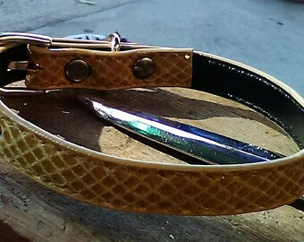 Gold snakeskin 13inch dog collar