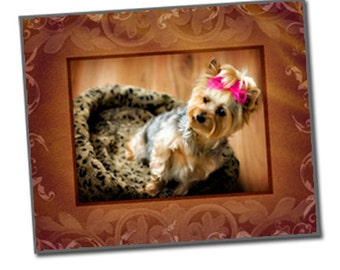 """16x20"""" Gallery Wrap Template - UNLEASHED GALLERY 3 - Digital File"""