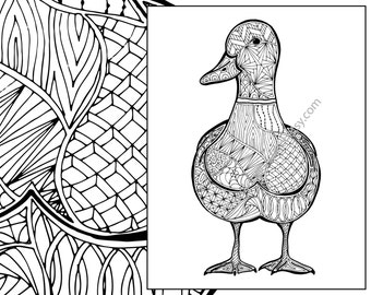 Zentangle Duck Colouring Page Animal Coloring Sheet Bird Pdf Intricate Design Sketch Grown Up