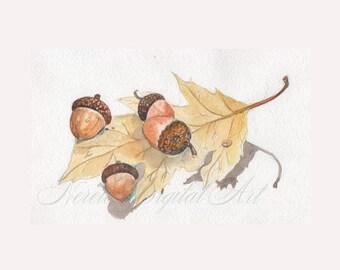 Leaf and Acorn