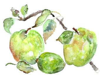green Apple Print, Green Kitchen Wall Decor, watercolor print, apple painting, kitchen wall art, lime green, kitchen print, fruit painting