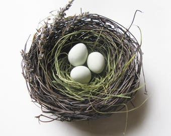Natural bird nest with eggs and lavender sprigs