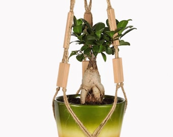 Plant Hanger / Hanging Planter / Flower Pot Holder / Indoor Planter / Modern Home Decor / Rustic Style / Housewarming / Mothers Day Gift