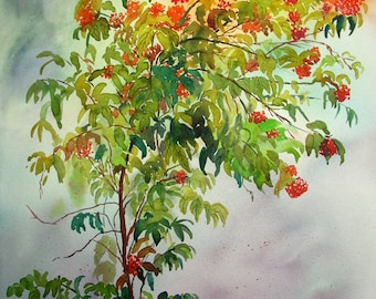 Ixora plant Original watercolor artwork