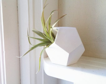 Geometric planter, Dodecahedron, desk accessory, air plant holder, planters for small spaces