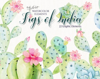 Figs of India - art clipart - Illustration - Watercolor Elements - PNG file
