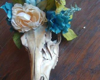 Summer Harvest Deer Skull