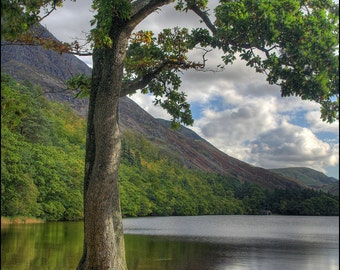 Crummock Water - Premium English Landscape Photograph by Pro Photographer. Decorative Wall Art Print. Lake District Scene.