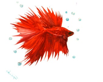 Bright Red Betta Fish, original watercolor painting, in,aquarium fish tank art