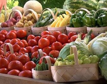 Emergency Seed Stash, Garden and Vegetable Seeds Garden Kit, 35 Variety Packs, Heirloom Seeds Survival Emergency Gift