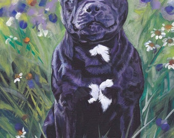 Staffordshire BULL TERRIER dog art portrait canvas PRINT of LAShepard painting 8x10""