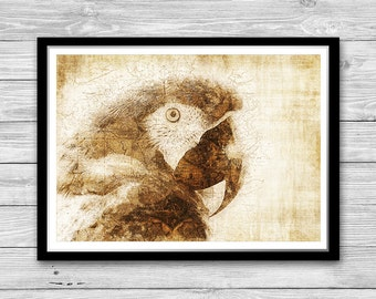 Parrot Print, Tropical Print, Archival art print with style of old geographic maps, Parrot Art print, Wildlife Decor, Macaw print, Bird Art