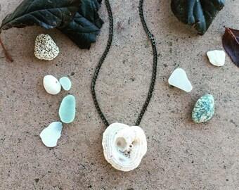 Unique shell necklace