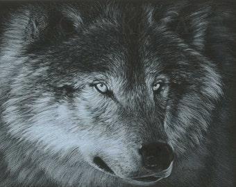 Wolf Art DARK WOLF by Carla Kurt Signed Wolf Print 11 x 14
