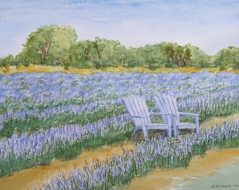 Blanco Lavender Field with Chairs, Set of 4 Blank Note Cards, 4.25x5.5 inches