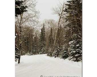 Winter Landscape, Nature Photography Print, Snow Covered Roads, Frosted Branches, Snow Themed Man Cave Decor, 8x10 or 11x14, Gift for Him